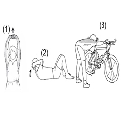 Stretching Exercise - Step 5