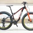 fat-bike-500-500