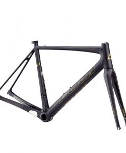 Fuji-SL-Elite-Frame-MY17-Satin-Carbon-Gold